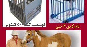 فرق بین باسکول گوساله و اسب دیجیتال